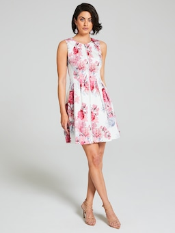 Roses In Time Fit & Flare Dress